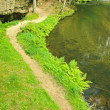 Footpath on river bank in sandstone valley, leaves trees, fern stalks above water. — Stock Photo