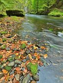 Mountain river with low level of water, gravel with first colorful leaves. Mossy rocks and boulders on river bank, green fern, fresh green leaves on trees. — Stock Photo