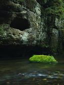 Big mossy sandstone boulder in clear mountain river, fresh green fern above water. Reflections in water level, first colorful beech leaves lay on mossy ground. — Stock Photo
