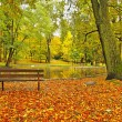 Autumn park with leaves trees, colorful leaves of aspen, maple and chestnut covered ground. Abandoned wooden bench. — Stock Photo #33229589