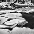 Night winter view to frozen brook, icy twigs and icy boulders above rapid stream. Reflections of light in icicles. Black and white photo. Extreme freeze. — Stock Photo #35111827