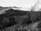 Hill increased from early morning autumn foggy background. First sun rays. Black and White photo. Peaks of hills and trees are sticking out from yellow and orange waves of mist. — Stock Photo