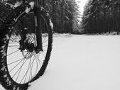 The front wheel of mountain bike in the first snow. Dark foggy wheater in the forest. Melted snow flakes on tyre, frame and disk break. — ストック写真