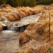 Mountain stream at beginning of winter time, old orange dry grass on both banks, ice on boulders and stone in the water. — Stock Photo #37884565