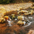 Stock Photo: Mountain stream at beginning of winter time, old orange dry grass on both banks, ice on boulders and stone in the water.