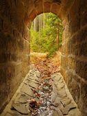 Tom spygatt i tunneln, skogen utanför. stony väggar — Stockfoto