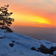Winter morning view to East with orange sunrise. Daybreak in rocks of Bohemian-Saxon Switzerland park. — Stock Photo #39949275
