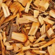 Fresh wet wood chip from alder tree, nature texture — Stock Photo #43125121
