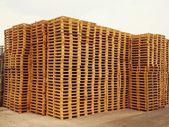Stock de palettes neuves en bois en euro à la compagnie de transport. — Photo