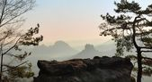 View through branches to deep misty valley in Saxon Switzerland. Sandstone peaks increased from foggy background, the fog is orange due to sunrise. — Stock Photo