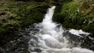 Cascade on small mountain stream, water is running trough big crack in basalt boulder and bubbles create on level milky wate — Stock Video
