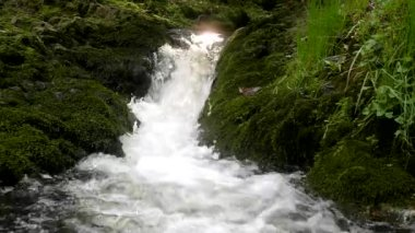 Cascade on small mountain stream, water is running trough big crack in basalt boulder and bubbles create on level milky water. — Stock Video