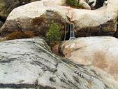 Easy via ferrata in sandstone rock of Saxony Switzerland. Iron twisted rope fixed in block by screws snap hooks — Stock Photo