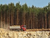 Big truck with red cabin and gray semitrailer full of loaded material. Open mine in pine forest — Stock Photo