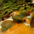 Cascades in rapid stream of mineral water. Red ferric sediments on big boulders between green ferns. — Stock Video
