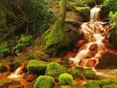 Cascades in rapid stream of mineral water. Red ferric sediments on big boulders between green ferns — Stock Photo
