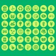 Vector organic and eco icons set — Stock Vector