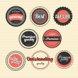 Set of premium product vector labels and stickers — Stock Vector