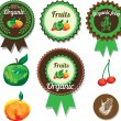 Set of organic vector fruit labels, stickers and elements — Stock Vector