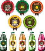 Set of vector fruit juice labels with vector bottles with changing labels — Stock Vector