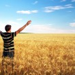Stock Photo: Man in meadow of golden wheat. Emotional scene.