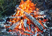 Coals in the fire — Stock Photo