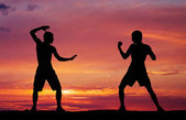 Silhouettes of two fighters on sunset fiery background — Stock Photo