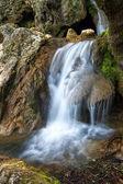 Drewno wiosna i rzeki. wodospad. — Zdjęcie stockowe