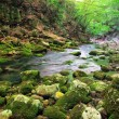 Mountain river in forest and mountain terrain. Crimea — Stock Photo #34935329