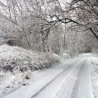 Winter road in snowy forest.  — Foto Stock