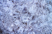Ice background. Ice natural background — Stock Photo
