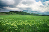 Beautiful mountain landscape with cloudy sky. Field in Crimea. — Stock Photo