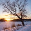 Stock Photo: Winter landscape with sunset sky. Composition of nature.