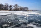 Zimní krajina s rákosím, stromy a zamrzlou řeku — Stock fotografie