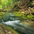Mountain river in forest and mountain terrain. — Stock Photo #42281013