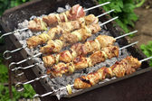 Pork Shish kebab on Fire. Appetizing fresh meat shish kebab prep — Stock Photo
