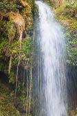 Güzel dağ şelale — Stok fotoğraf