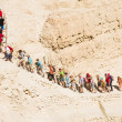 Routes at the Dead Sea — Stock Photo