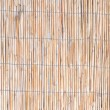 Fine texture of the walls of reeds — Stock Photo