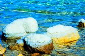 Stones on the bank of the Dead Sea — Stock Photo