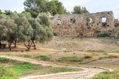 Antipatris fortress . — Zdjęcie stockowe
