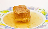 Fresh honey with honeycomb . — Stock Photo