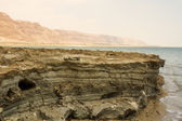 Beautiful coast of the Dead Sea . — Foto Stock