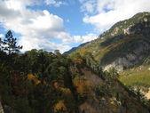 National Park Durmitor Mountains, Montenegro, Europe — Stock Photo