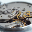 Stock Photo: Mechanical wrist watch