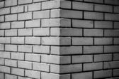 Black and white brick — Stock Photo
