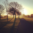 Постер, плакат: Early morning walk in Central Park Plymouth