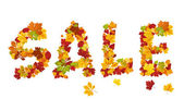 Seasonal autumn sale inscription — Stok Vektör