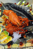 Lobster is on a platter — Stock Photo