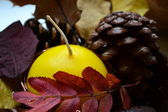 A candle in autumn composition — Stock Photo